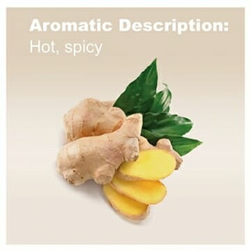 doTERRA Ginger Essential Oil - May Help to Support Healthy Digestion, May Help to Reduce Bloating, Gas, Occasional Indigestion, and Occasional Nausea; For Diffusion, Internal, or Topical Use - 15 ml - 3