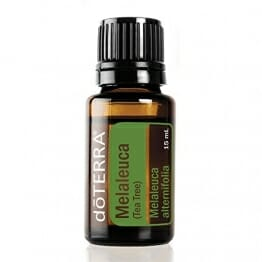 doTERRA Melaleuca Essential Oil - Promotes Healthy Immune Function, Seasonal Protection, Cleansing and Rejuvenating Effect on Skin; For Diffusion, Internal, or Topical Use - 15 ml - 1