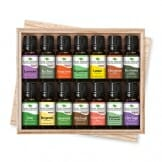 Plant Therapy Top 14 Essential Oil Set, Includes 100% Pure, Undiluted, Therapeutic Grade Oils 10 mL each - 1