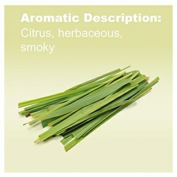 doTERRA Lemongrass Essential Oil - Supports Healthy Digestion, Used for Soothing Massage and Refreshing Feeling; For Diffusion, Internal, or Topical Use - 15 ml - 3