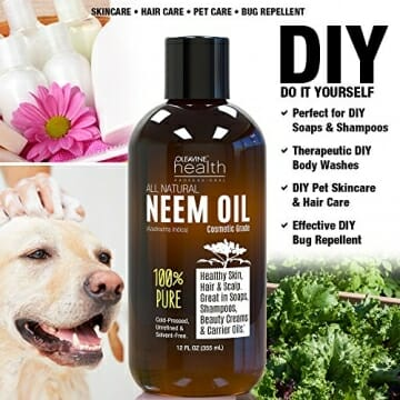 Neem Oil Organic & Wild Crafted Pure Cold Pressed Unrefined Cosmetic Grade 12 oz for Skincare, Hair Care, and Natural Bug Repellent by Oleavine - 4