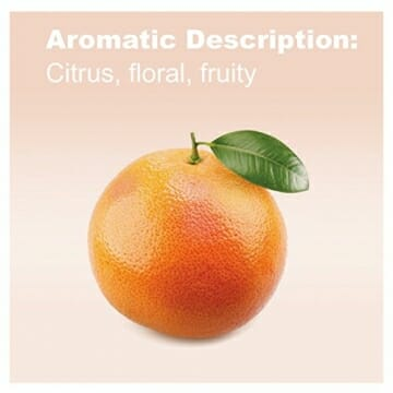 doTERRA Grapefruit Essential Oil - Improves the Appearance of Blemishes, Supports Healthy Metabolism, Uplifts Mood; For Diffusion, Internal, or Topical Use - 15 ml - 3